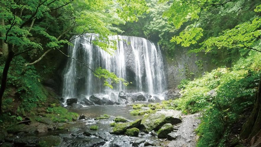 【達沢不動滝】福島県が誇る名瀑。美しい新緑や紅葉も楽しめ、散策にも最適(当館から車で10分)。