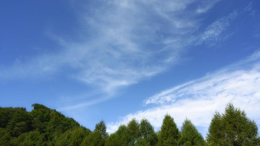 【山と森の眺望】各お部屋からは大自然に包まれた高原の景色をご覧いただけます。