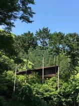 森の中に佇むお家(全景)