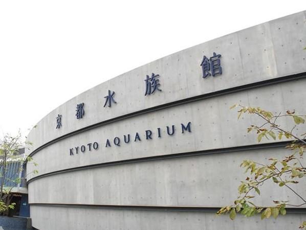 【京都水族館】まで5駅で京都駅まで出て、駅からは徒歩15分で到着。「京都駅」下車