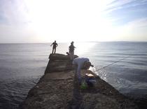 元名海岸堤防にて