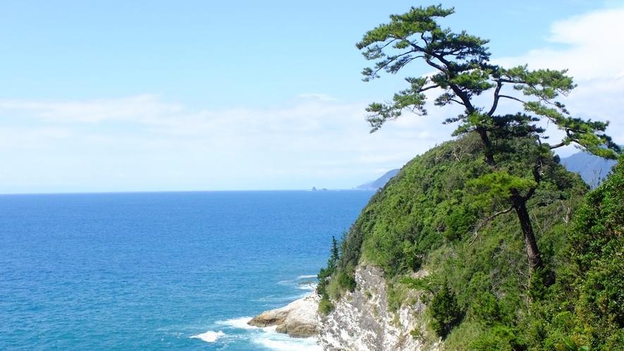 *烏帽子山/頂上からの景色は絶景!頂上までは約30分