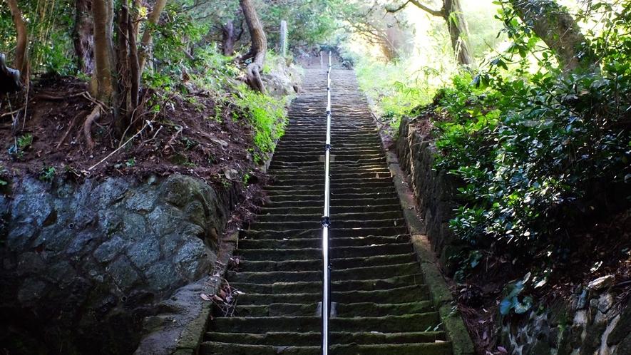 *烏帽子山/階段を一段ずつ登り山頂へ