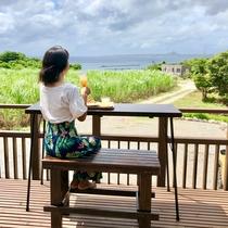 海を眺めながらのお食事