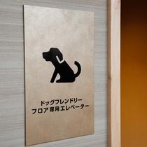 ドッグフレンドリーフロア専用のエレベーターを設けています