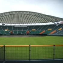 沖縄セルラースタジアム(車で15分)。プロ野球のキャンプ・公式戦も行われます。