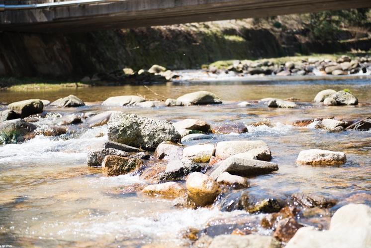 元湯の前には川が流れます。浅いので夏はお子様の遊び場にぴったり。小さな魚もいますよ。