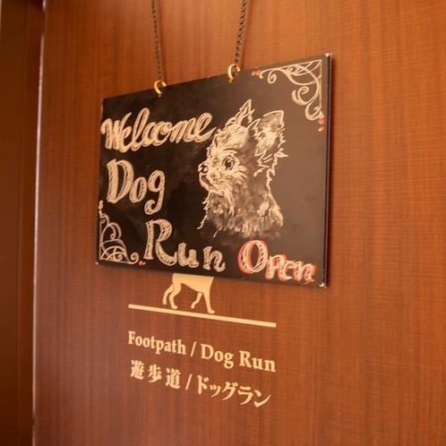【ドッグラン】
