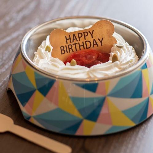 【わんちゃん用ケーキ】イチゴケーキ