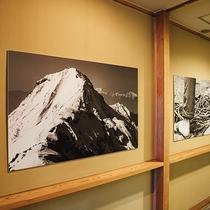 スタッフ山の写真