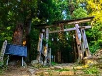 小菅神社奥社入口