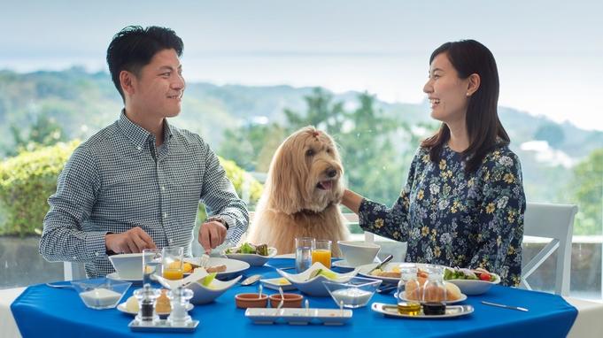 【朝食付き】遅いチェックインでもOK!愛犬と気ままに楽しむアクティブ伊豆観光