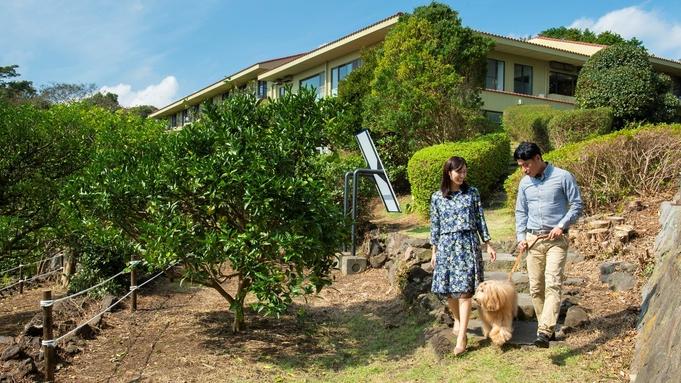 【素泊まり】自由な時間がたっぷり!愛犬と充実の伊豆観光