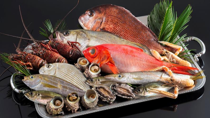 相模湾の新鮮魚介をふんだんに使用
