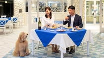 愛犬と充実のディナーをお楽しみください