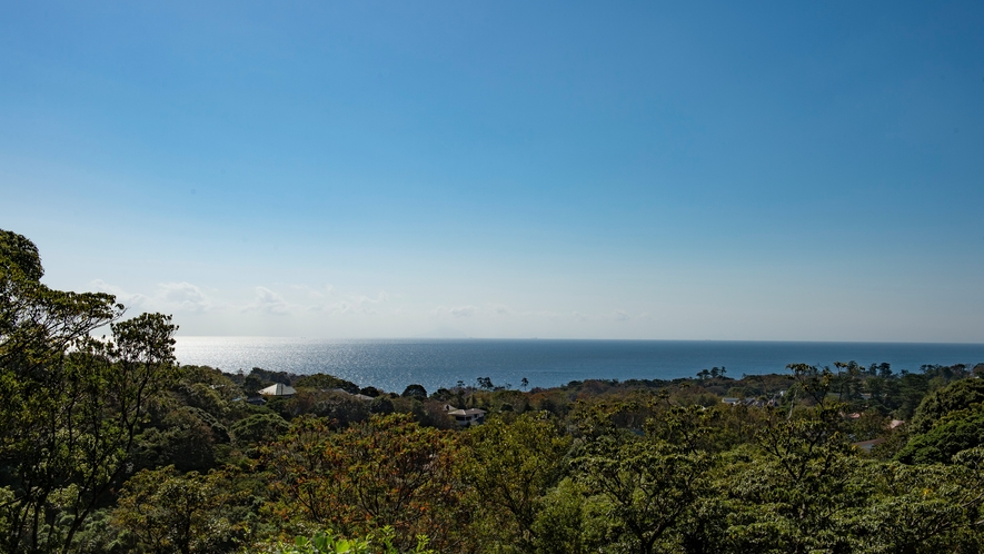 相模湾を見下ろす絶景のロケーション