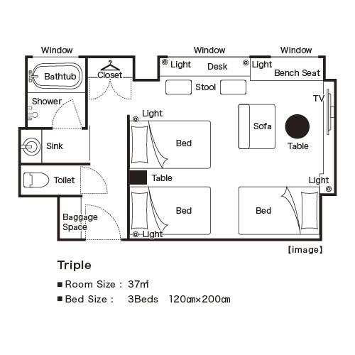 トリプル 平面図イメージ