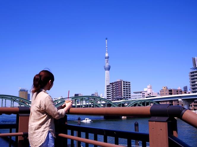 隅田川沿いにスカイツリーを望む。