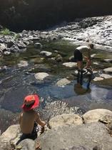 奥入瀬渓流周辺