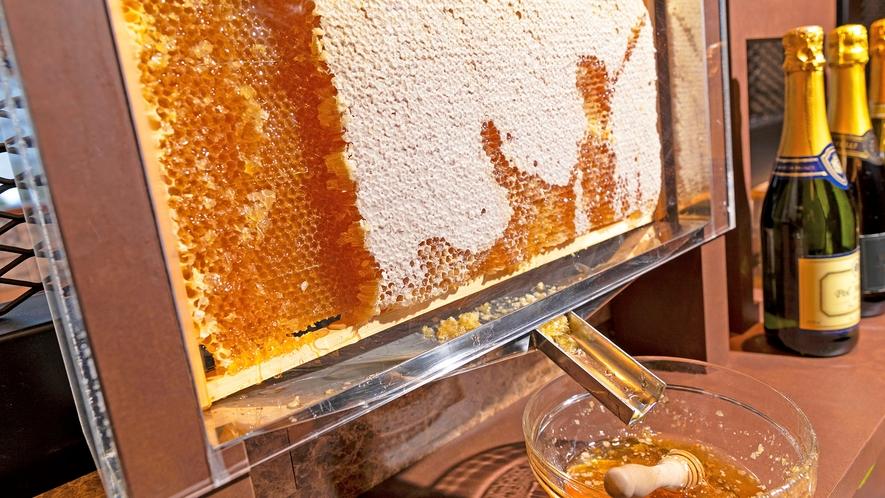 【朝食】ひと際目を引くのは、天然の蜂の巣から取れるハチミツ。ブルーチーズに合わせても美味。