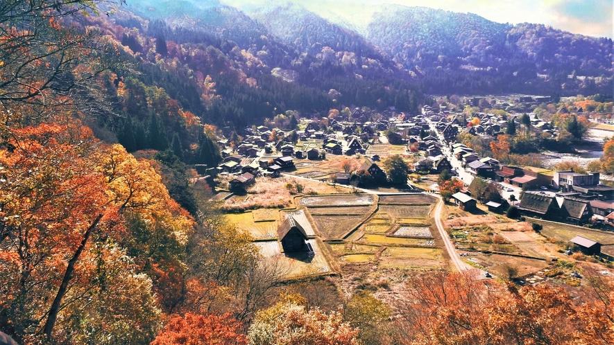 秋季 秋の白川郷展望台からの全景