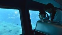 【半潜水式水中観光船 「シースカイ博愛」】