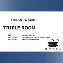 【トリプルルーム】18.94㎡、ベッド 90cm×195cm 2台+ソファベッド1台、バストイレ別