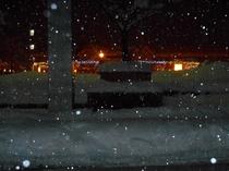 高田駅イルミネーション冬1
