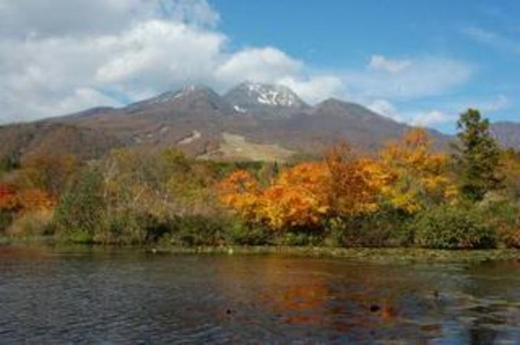 紅葉が美しい妙高のいもり池