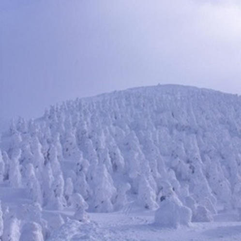 冬:蔵王山の樹氷(1月)02