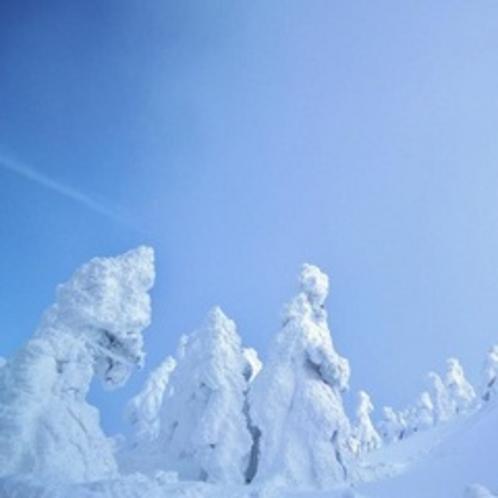 冬:蔵王山の樹氷(1月)03