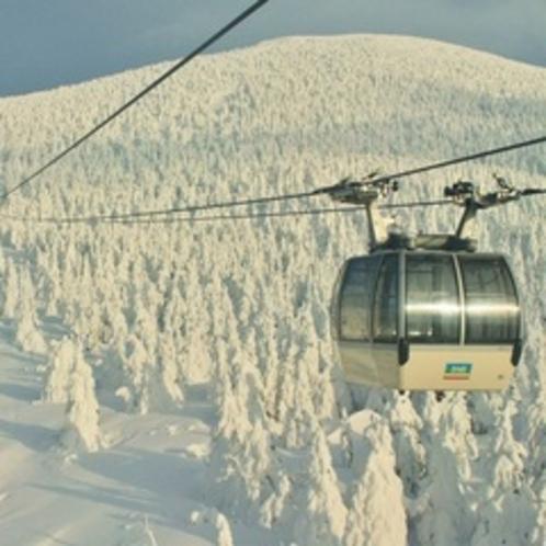 冬:蔵王山の樹氷(1月)01