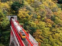 黒部峡谷 トロッコ電車と紅葉