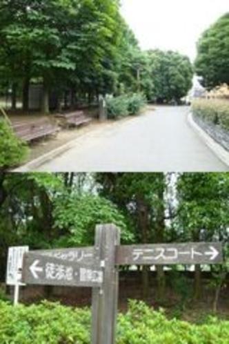 木場公園。当館より近くです。東京都現代美術館も公園より至近です。