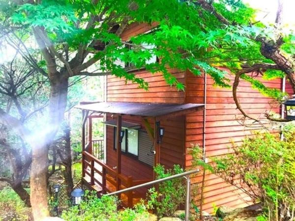 El mas alto VILLA IZUMI【Vacation STAY提供】