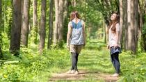 【県民の森】ブナの森をゆったり散歩。癒しのひとときをお過ごしください。