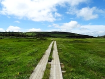 【黒谷地湿原】軽装でも回れる湿原なので、八幡平の自然を気軽に堪能することができます。