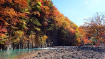 【松川渓谷(秋)】『松川渓谷』は全国的にも有名な紅葉の名所