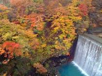 【松川渓谷(秋)】その美しさが見られるのはわずかな季節だけ。紅葉シーズンは是非八幡平へ!