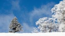 【下倉スキー場(ダイヤモンドコース入口)】降雪時には上質なパウダースノー