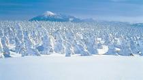 【樹氷】冬の八幡平の見どころの1つでもある樹氷。白の鎧をまとった木々が密集している光景は絶景です。
