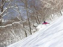 【下倉スキー場】たっぷりのパウダーをまき上げて進むダイナミックな滑り。
