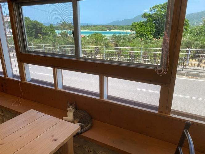 食堂から川平湾を見ながらの食事