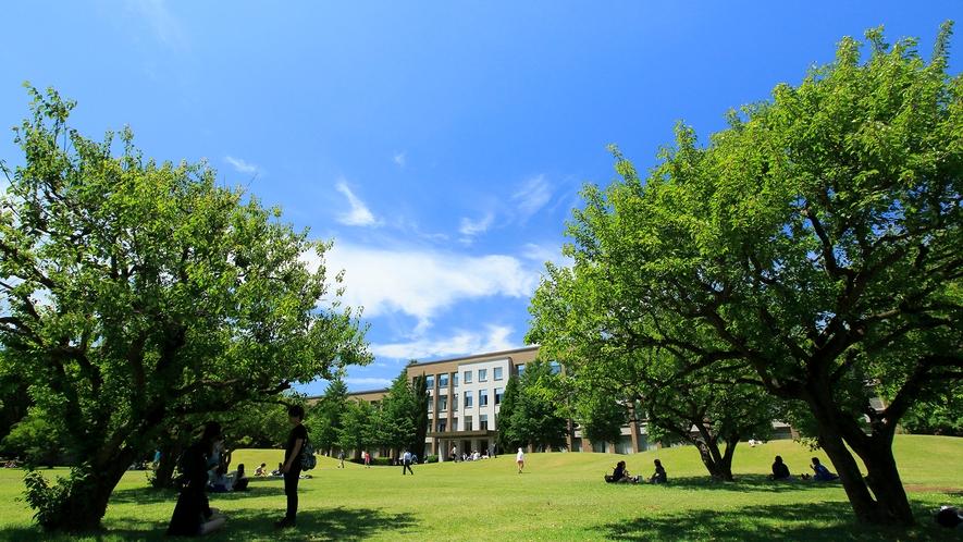 【周辺】国際基督教大学