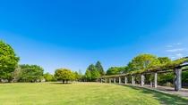 【観光】武蔵国分寺公園
