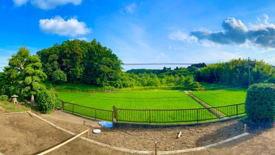 施設からの風景