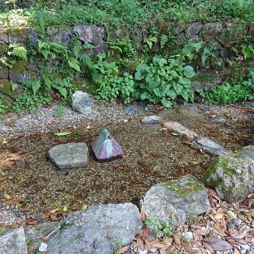 池ではワンちゃんが水浴び出来ます。