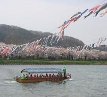 ●北上さくら祭り 渡し舟
