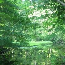 【観光】乙和池