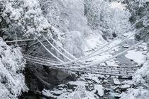 かずら橋(冬)